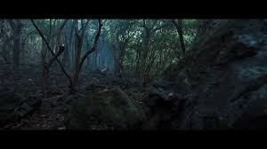 Uyumuyor, κανείς δεν κοιμάται στο δάσος απόψε, w lesie dzis nie zasnie nikt, nadie duerme en el bosque esta noche, w lesie dzis nie zasnie nikt, nobody sleeps in the woods tonight. Gtm Nobody Sleeps In The Woods Tonight Guessthemovie