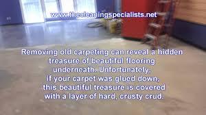 extraordinary glue carpet to wood 7 6pvyo