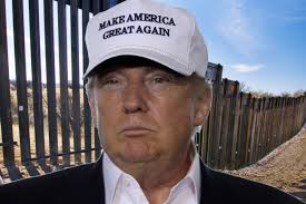 Image result for Donald Trump and Wall