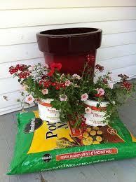 Container Gardening Ideas  GurdjieffouspenskycomContainer Garden Ideas For Front Porch