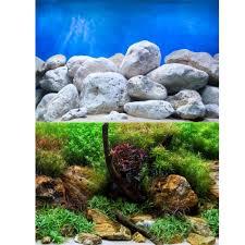 Aquarium Background Pictures Marina Aquatic Garden Bright Stone Aquarium Background Aquarium