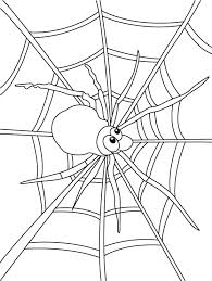 Small Picture Spider web coloring pages Download Free Spider web coloring