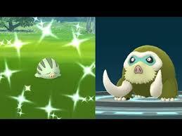 We Caught Shiny Swinub Pokemon Go Shiny Swinub Evolves Into Shiny Mamoswine