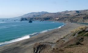 Goat Rock Beach Jenner Ca California Beaches