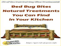 best bed bug treatment of the best bed bug bites treatment to stop bug bite itch at home diy bed bug treatment