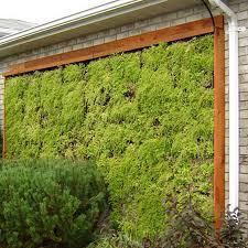 living wall planter outdoor. outdoor living wall planters planter y