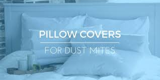 Dust Mite Pillow Covers Reviews