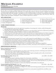 marketing example resume basic resumes examples free you are on online marketing resume sample