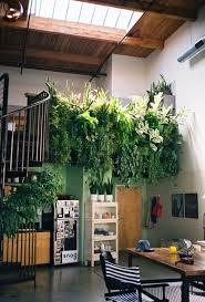 Terrace and Garden: Indoor Herb Garden Wall - Apartment Gardens