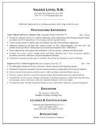 Simple Nursing Resume Form Professional Experience Eduacation