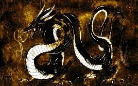 Black and white dragon illustration ...