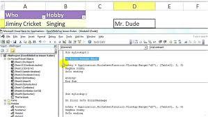 Vba Error Resume Next Delightful Snapshoot Excel Vba Basics Errors