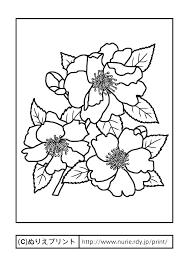 サザンカ3主線黒冬の花無料塗り絵イラストぬりえプリント