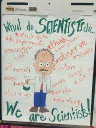 What Do Scientists Do Anchor Chart First Grade Science What Do Scientists Do We Are