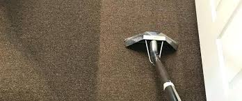 Detroit Carpet Cleaning Offering Commercial Business Office Services In The Metro Area