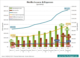 Evaluation Of Netflixs Financials Can Turtles Fly