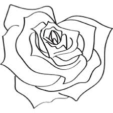 rose colouring pages