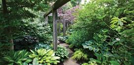 Small Picture Shade Garden Design Garden Design