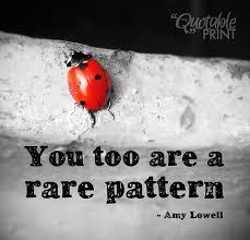 Ladybug Quotes Amazing Quotes About Ladybugs Holaklonecco