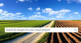 Free Photos for Education | Pics4Learning
