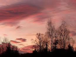 Image result for january sunrise