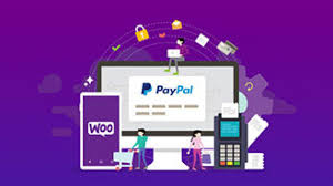 Paypal Purpose Code For Graphic Designer Woocommerce Paypal Setup An All In One Guide 2019