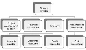 Finance Organizational Chart Organisations Acca Qualification Students Acca Global