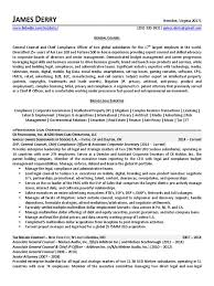 Cute General Counsel Resume Ideas Resume Ideas Namanasa Com