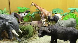 all animals in the world pictures. Simple The Safari Animals  Wild Animal World Throughout All In The Pictures