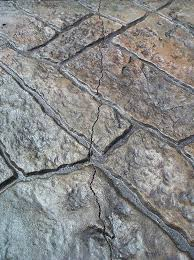 pavers vs stamped concrete which is