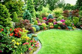 full size of garden ideas flower designs for sun and design layouts