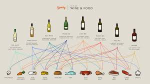 Wine Pairing Basics A Wine Cheat Sheet Infographic