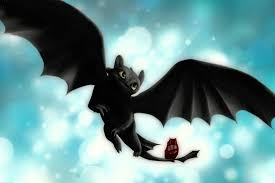 toothless how to train your dragon wallpapers high