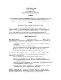 Customer Service Summary Resume Professional Summary Customer