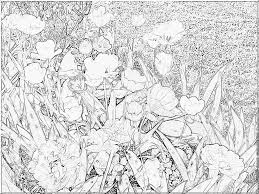 Coloriage Fleur Tulipe 2017 Img 6836 Imprimer Pour Les Enfants
