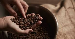 Make your own diy instant coffee by pulverising your normal brand to a fine powder, so it can brew right in your cup. Is It Safe To Eat Coffee Beans Benefits And Dangers