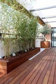 Die Besten 25 Bambus Sichtschutz Ideen Auf Pinterest Bambus Bambus Als Sichtschutz Fur Terrasse Und Balkon