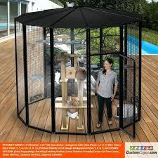 cat outdoor play area center enclosed photos