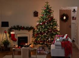 Full Size of Christmas: Christmas Trees Q Picture Ideas Tree Wall Bracket  Lights Decoration Trending ...