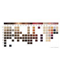 Igora Vibrance Shade Chart Schwarzkopf Imported Igora Vibrance Tone On Tone Coloration