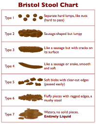 Cat Stool Chart Cat Constipation Causes Symptoms Treatment Of Cat