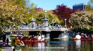 boston public garden 10 fun things for you to do see