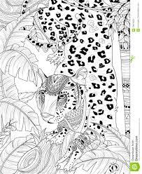 Jungle Leopard Coloring Page Stock Illustration Illustration Of