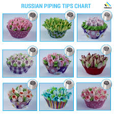 Icing Nozzle Chart Ternola Russian Piping Tips E Guide Set Of 31pcs For