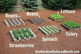 how to build a garden. How To Build A No Fuss Vegetable Pallet Garden
