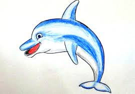 Drawingcolor How To Draw A Dolphin How To Color A Dolphin For Beginners
