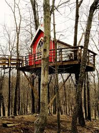 treehouse masters brewery. Treehouses Treehouse Masters Brewery