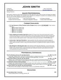 Format For A Professional Resume Best Professional Resume Format For