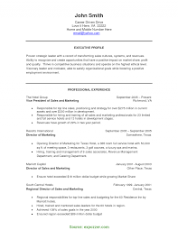 Best Luxury Sales Manager Resume Appealing Executive Profile And