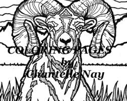 Small Picture Bighorn sheep Etsy